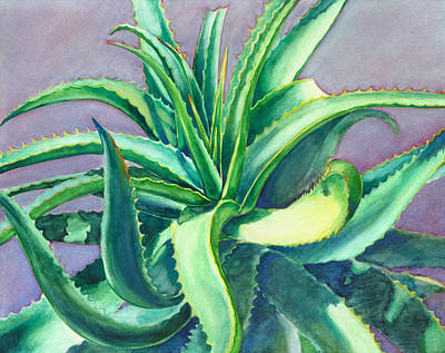 Painting - Aloe Vera Watercolor by Linda Ruiz-Lozito