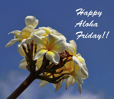 Photograph - Aloha Friday by Pamela Walton