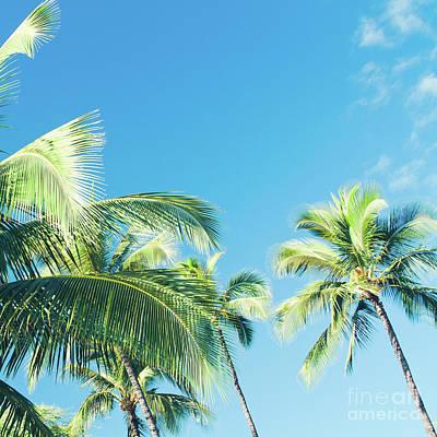 Photograph - Aloha Hawaii Lahaina Palms by Sharon Mau