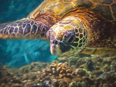 Photograph - Aloha Honu by Susan Rissi Tregoning