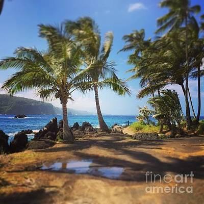 Photograph - #aloha #keanae #myislandhome #maui by Sharon Mau
