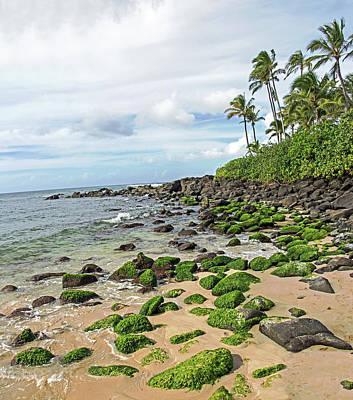 Photograph - Aloha Oahu by Angie Schutt