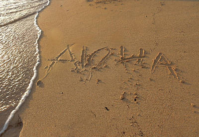 Photograph - Aloha by Pamela Walton