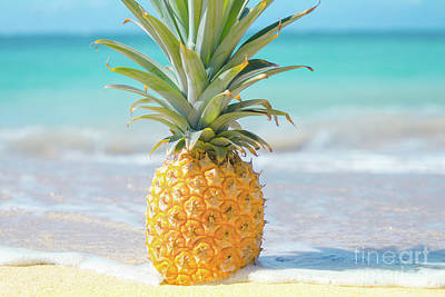 Photograph - Aloha Pineapple Beach by Sharon Mau