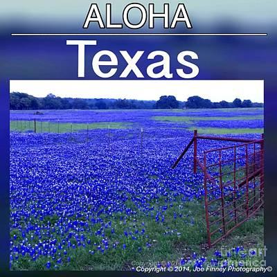 Photograph - Aloha Texas by Joe Finney
