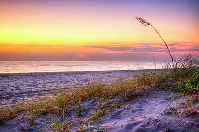 Photograph - Alone At Dawn by Debra and Dave Vanderlaan