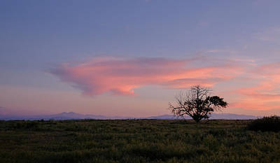 Photograph - Alone At Sunset by Monte Stevens