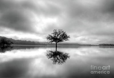 Photograph - Alone Bw by Douglas Stucky