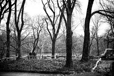 Photograph - Alone In Central Park 2016 by John Rizzuto
