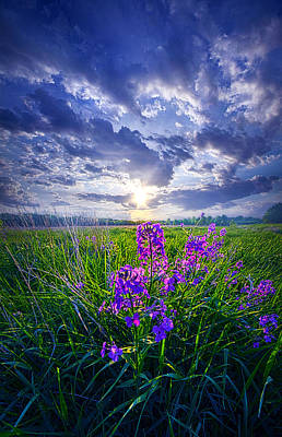 Photograph - Alone In Our Dreams by Phil Koch