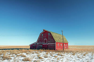 Alone In The Middle Art Print by Todd Klassy