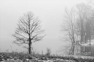 Photograph - Alone In The Mist - D009870-bw by Daniel Dempster