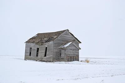 Photograph - Alone In The Snow by Bonfire Photography