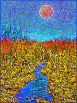 River In The Wilderness - Boulder County Colorado Art Print