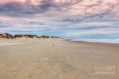 Photograph - Alone In The World On The Outer Banks by Dan Carmichael