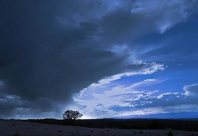 Photograph - Alone by John Hansen