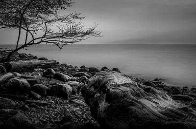 Photograph - Alone On Spanish Banks by Brad Koop
