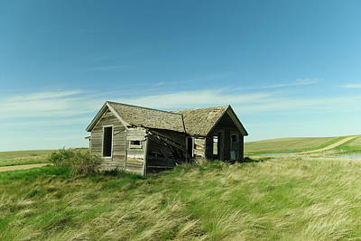 Photograph - Alone On The Grasslands by Jeff Swan
