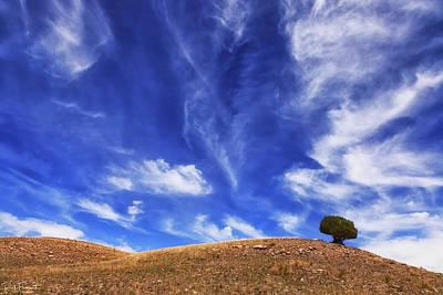 Photograph - Alone by Rick Furmanek