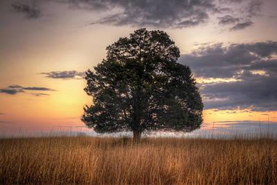 Photograph - Alone by Ryan Wyckoff