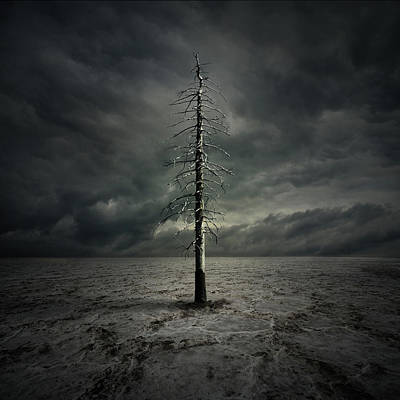 Dark Digital Art - Alone by Zoltan Toth