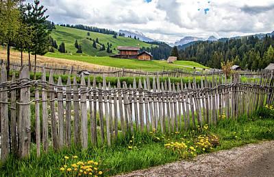 Photograph - Along An Alpine Lane by Carolyn Derstine