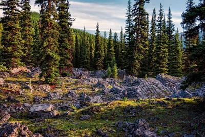 Alberta Photograph - Along Black Prince Cirque Trail by Joan Carroll