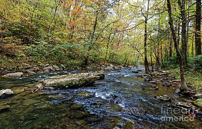 Photograph - Along Clifty Creek by Paul Mashburn