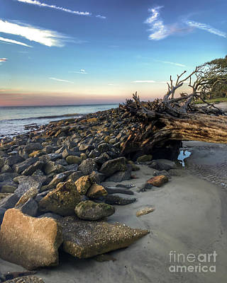Photograph - Along Driftwood Beach by Kerri Farley