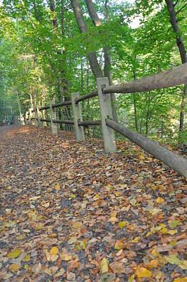 Wissahickon Creek Photograph - Along Forbidden Drive Philadelphia by Bill Cannon