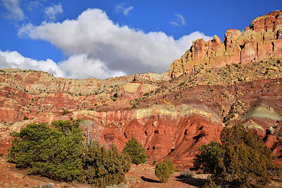Photograph - Along Scenic Drive In Capitol Reef Np by Ray Mathis