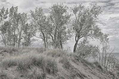 Photograph - Along Shores Of Lake Michigan by John M Bailey