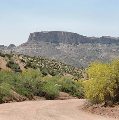 Apache Creek Photograph - Along The Apache Trail by Gordon Beck