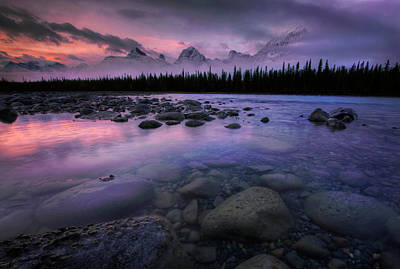 Photograph - Along The Athabasca by Dan Jurak