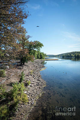 Photograph - Along The Bank Of The Delaware River by Judy Wolinsky