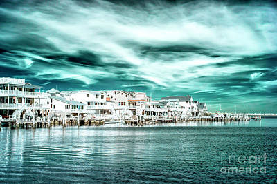 Photograph - Along The Bay Infrared by John Rizzuto