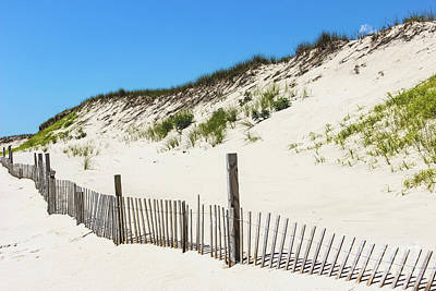 Photograph - Along The Beach by Colleen Kammerer