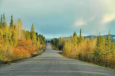 Photograph - Along The Cassiar Hwy - British Columbia by Dyle   Warren