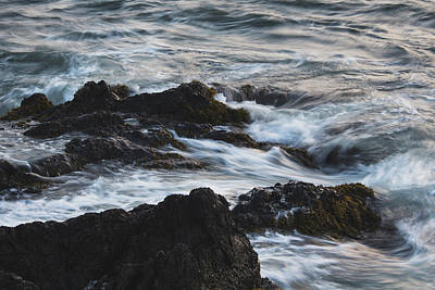 Photograph - Along The Coast by Andrew Pacheco