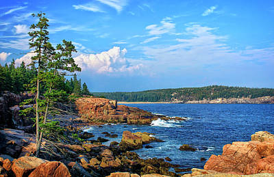 Photograph - Along The Coast In Acadia National Park by Carolyn Derstine