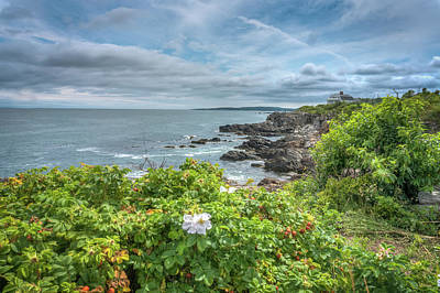 Photograph - Along The Coast by Jane Luxton