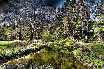 Photograph - Along The Creek by William Norton