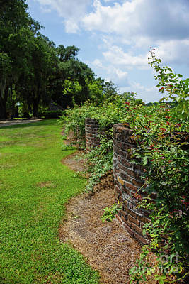 Photograph - Along The Curved Wall by Jennifer White