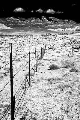 Photograph - Along The Fence Line by John Rizzuto