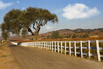 Vineyard Digital Art - Along The Fence by Patricia Stalter