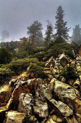 Photograph - Along The General's Highway Sequoia National Park by Roger Passman