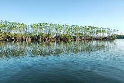 Photograph - Along The Haulover Canal by John M Bailey