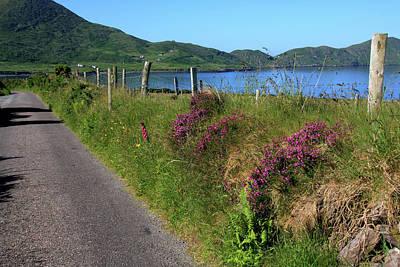 Laneway Photograph - Along The Kerry Way by Aidan Moran