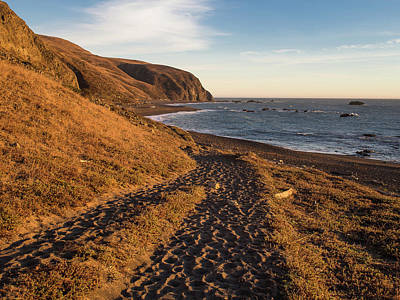 Photograph - Along The Lost Coast Trail by Greg Nyquist