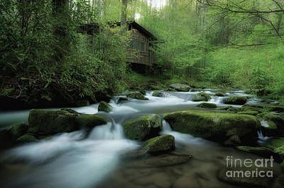 Abandoned House Photograph - Along The Morning Stream by Michael Eingle